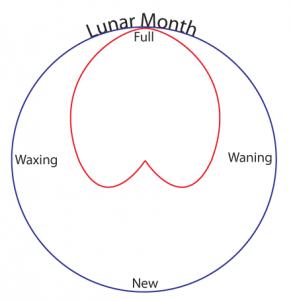lunar-cycle-05