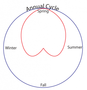 annual-cycle-05-06